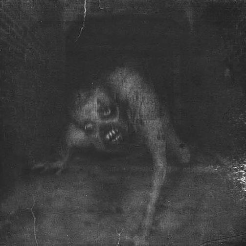 Hello Scary Horror Creepy Halloween Spooky
