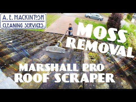 How To Get Rid Of Moss From Roof Tiles
