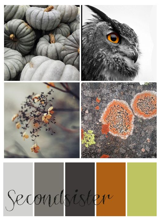 j'adore the grey and orange marriage