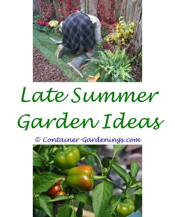 Home And Garden Gardens Cheap Garden Fencing Native Gardens And