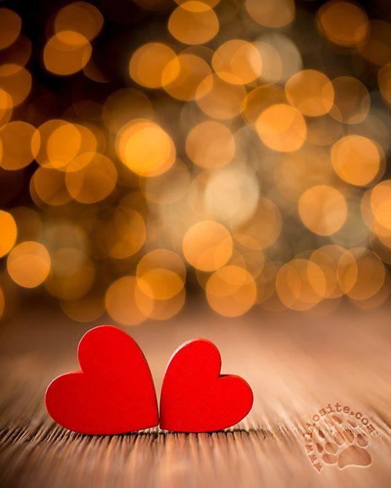 """Massimo Bisotti ha un suo modo semplice di giungere al cuore e alla radice dei problemi. Mi piace leggerlo, mi piace pensare che la vita potrebbe essere come la descrive lui....  """"La vita ci ferisce, ci colpisce ma noi abbiamo dentro il potere di rigenerarci ancora. Siamo tutti piccoli universi danneggiati. Eppure due universi [segue]""""  #massimobisotti, #vita, #ferite, #speranza, #italiano,"""