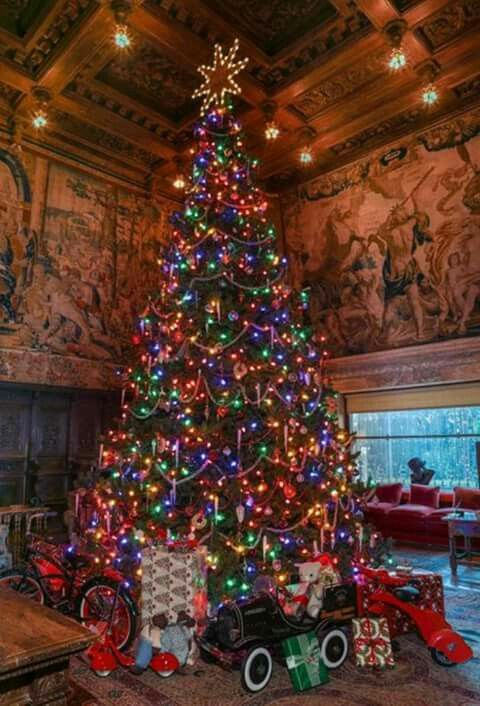 If I Am Not Mistaken This Magnificent Christmas Tree Is In The Biltmore Estates Holiday Decor Christmas Christmas Pictures Beautiful Christmas Dreaming