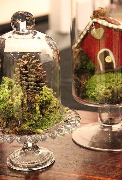 Dentro da redoma, a planta e os enfeites simulam uma paisagem.