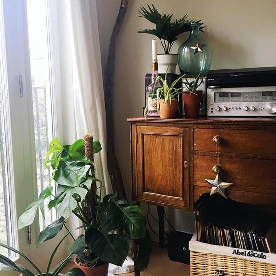 Just need to re-pot the monstera and hang a scaff plank shelf and then my fave corner is complete. . . . . . . #urbanjunglebloggers #mybristolhome #abmplantlady #monsteradeliciosa #botanicals #acolorstory #dslooking #apartmenttherapy #nestandthrive #houseplantsofinstagram #houseplantclub #houseplantlover #interieurstyling #indoorjungle #plantsmakepeoplehappy #crazyplantlady #plantliving #livingwithplants #plantgang #ihavethisthingwithplants #myhappyhome #interior123 #interieurs #bohostyle