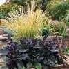 Garnish Your Vegetable Garden