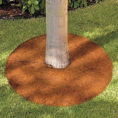 Coir tree rings and weeding on pinterest for Tree edging border ideas