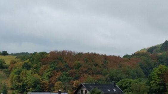 Der Herbst beginnt.