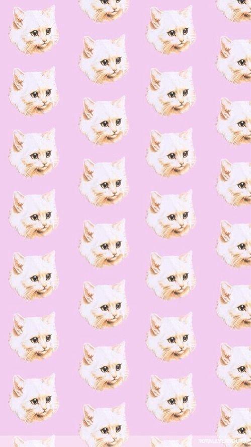 kitty cat cute kawaii Grunge pink meow pastel kittens background pastel goth nooruskaad \u2022