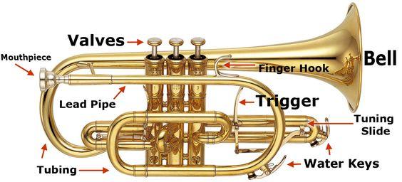 Google Image Result for http\/\/wwwsheehans\/images\/help\/cornet - band instrument repair sample resume