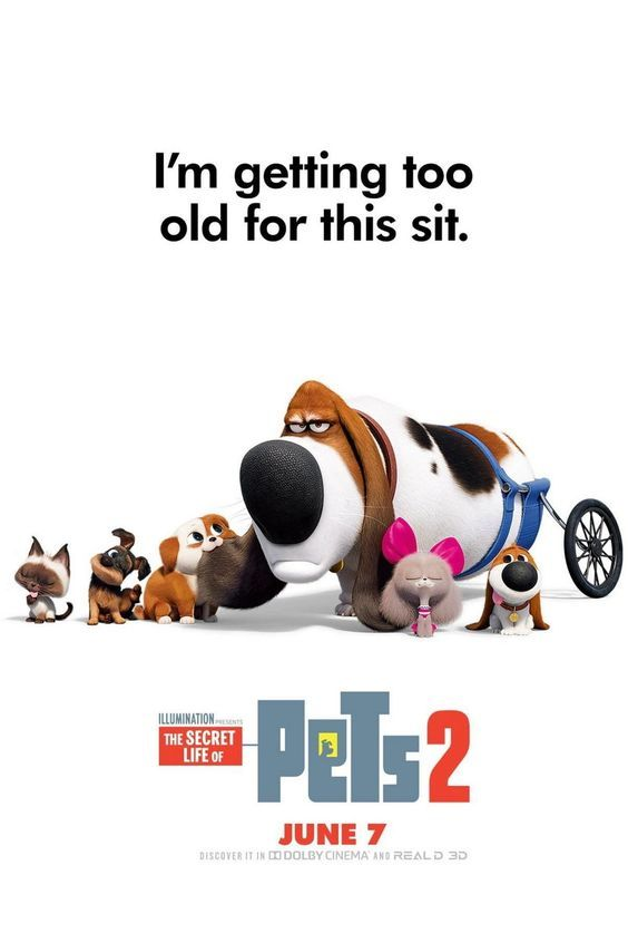 2019 The Secret Life Of Pets 2 In 2020 Secret Life Of Pets Secret Life The Secret