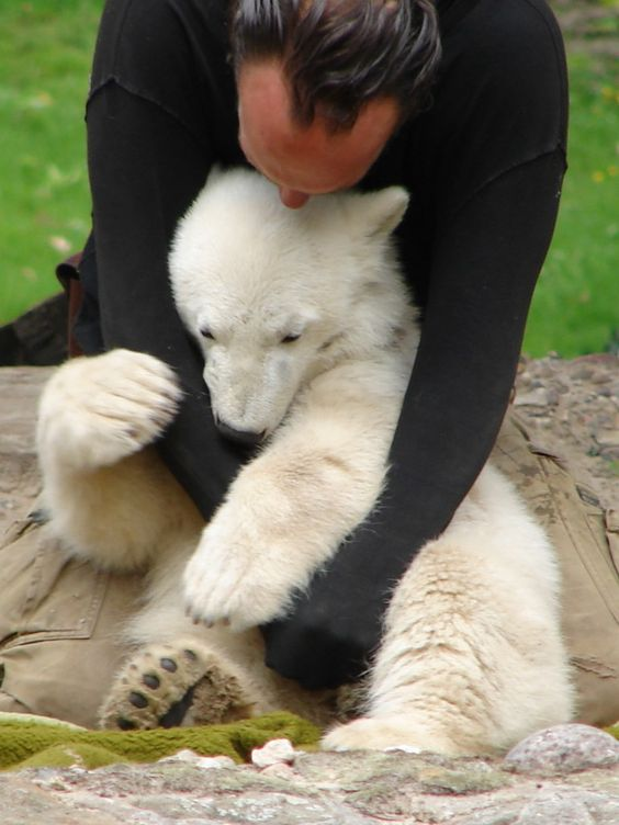 Knut et son soigneur Zoo de Berlin