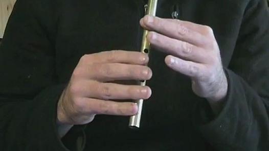 The Butterfly - apprendre un morceau à la flûte irlandaise