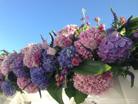 flores boda radiant orchid