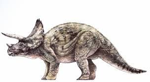 Resultados da Pesquisa de imagens do Google para http://www.jplegacy.org/jpencyclopedia/wp-content/uploads/2011/03/adult-triceratops-small.j...