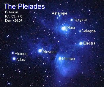 Pleiades is a group of stars situated in the Taurus constellation.  It is a constellation from the Northern Hemisphere. Orion and Pleiades are very close to each other.: