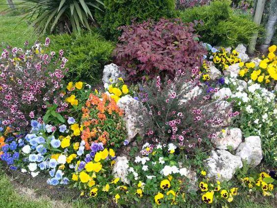 jardineria - Buscar con Google
