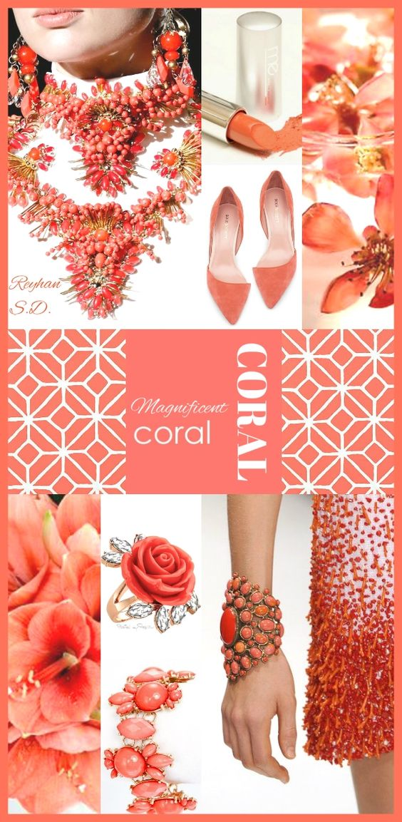 '' Coral '' by Reyhan S.D.
