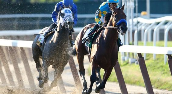 American Pharoah, primer caballo en 37 años que conquista la Triple Corona
