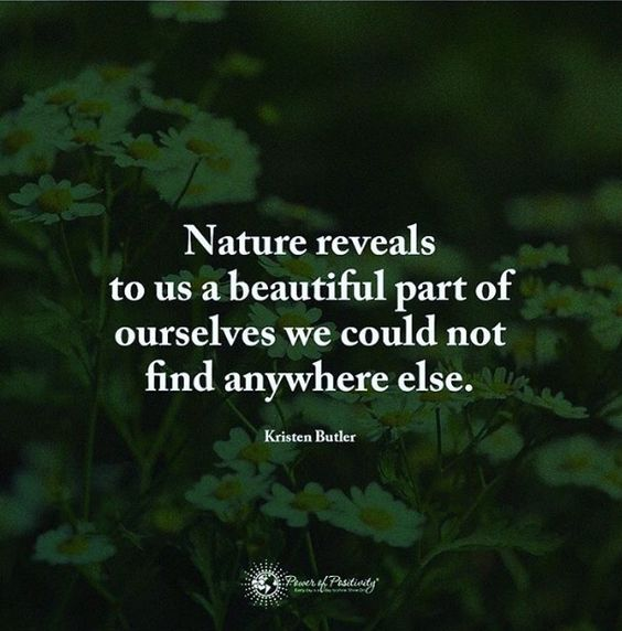 Life And Nature Quotes: Nature, Nature Quotes And Love On Pinterest