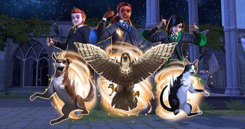 Animagus Hogwarts Mystery Harry Potter Fan Art Hogwarts