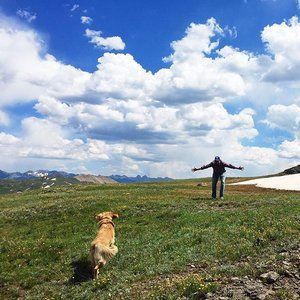 top of the mountain, top of the world.  so grateful for these two.  and my two other furry loves behind the camera.  and to have more mountain time on deck for tomorrow!  bon weekend!! . . . . . . . . #colorado #mountains #overland #explore #landcruiser #camping #goldenretriever #mylove #happydog #dogsofinstagram #soundofmusic #littleswitzerland #sanjuans #furbabies #ouray #blackbearpass