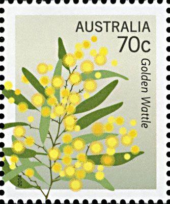 Golden Wattle - Australia