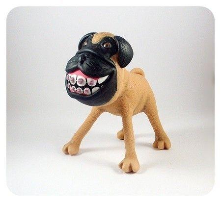 Pug de Aparelho
