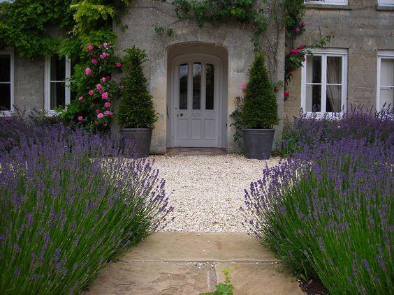 Lavender lined front door