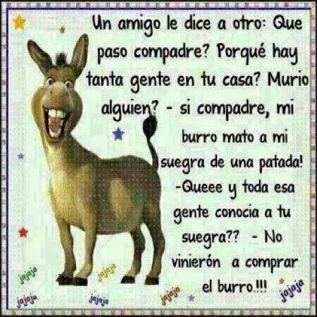 El burro…