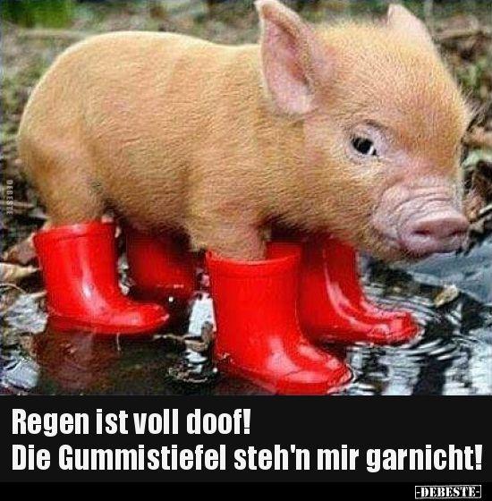 buy popular a2c98 7245b Regen ist voll doof! Die Gummistiefel steh'n mir.. | Lustige ...