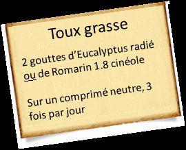 eucalyptus et romarin contre la toux grasse