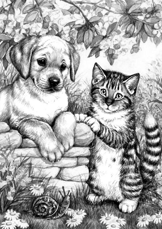 malvorlagen pferde hunde katzen  aglhk