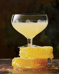 Honey honey! We love the look of this Bee's Knees cocktail. But whoever wants to share it can buzz off!