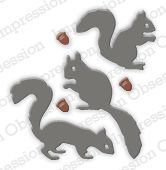 Squirrel Set - DIE213-D: