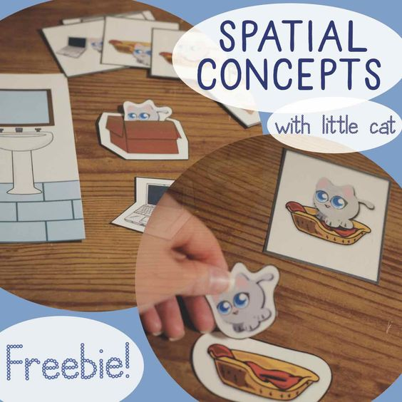 Spatial Concepts/Prepositions FREEBIE from Cat Says Meow (Speech Therapy, Special Education)  - repinned by @PediaStaff – Please Visit ht.ly/63sNtfor all our pediatric therapy pins