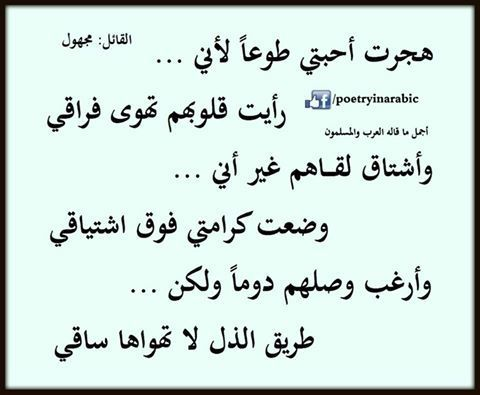 Pin By Wissam Samsoma On Stɑ Tyt ɑ I D קn ǿtǿ Words Arabic Words Quotes