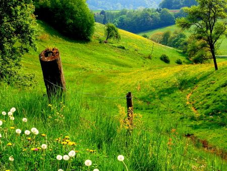 on a quiet path listen to your breath and still your mind...