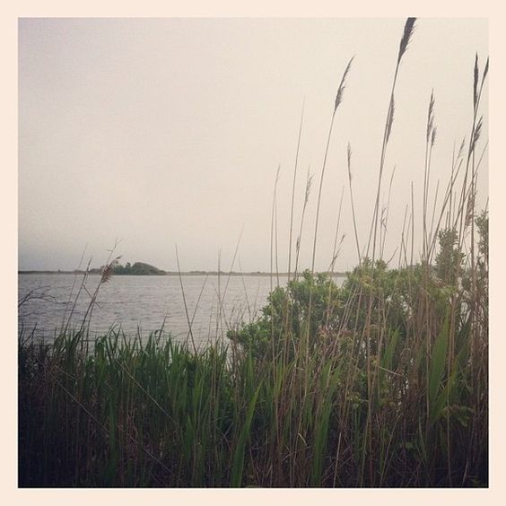 Trustom Pond