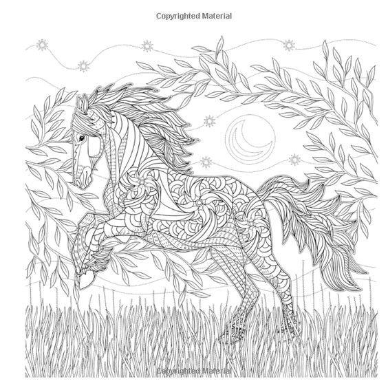 Pin Von Barbara Auf Coloring Horse Zebra Ausmalen Ausmalbilder Bilder
