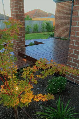 The outdoor lighting in this garden enhances the colours of a Japanese maple at dusk.  Check out the entire Bentleigh project at www.intrinsiclandscapes.com.au