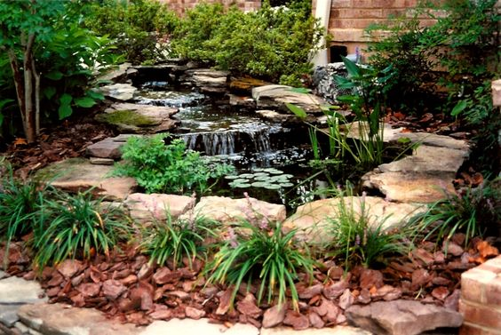 Small pond waterfall ideas small ponds small ponds for Small yard ponds and waterfalls