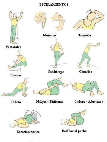 Los ejercicios fisicos se pueden dividir de acuerdo a la