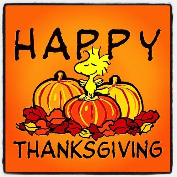 Happy Thanksgiving everyone !! Ef89e6087575dedd5dd9f27da806f43b