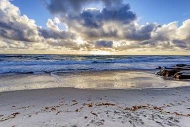 Windansea Beach Seascape