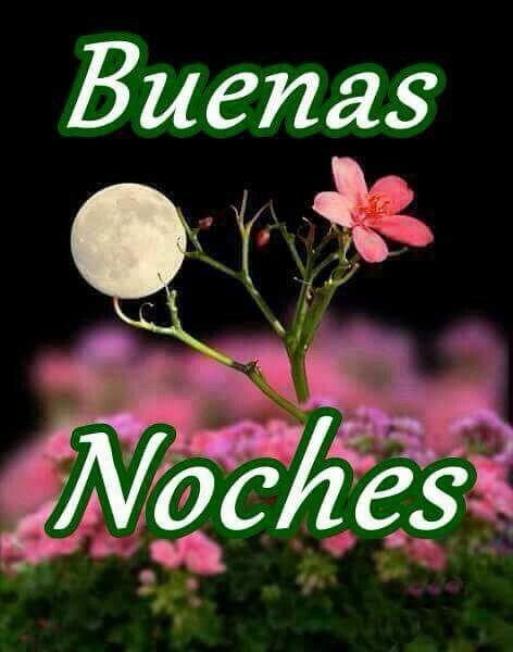 Pin By Maria Cladakis On Saludos Memes Good Night I Love You Good Night