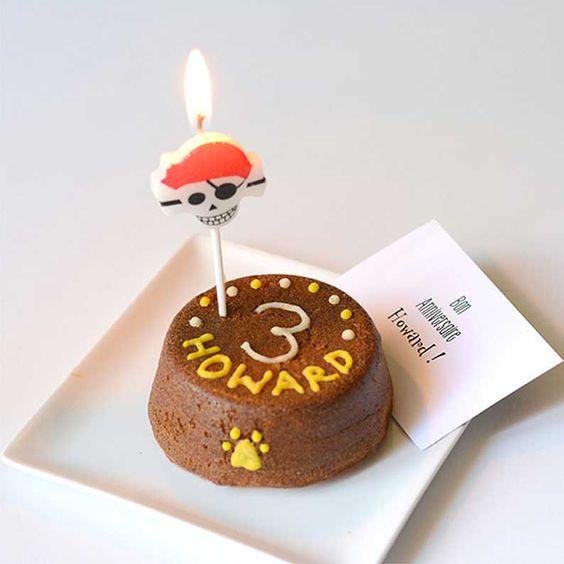 gâteau anniversaire pour chien