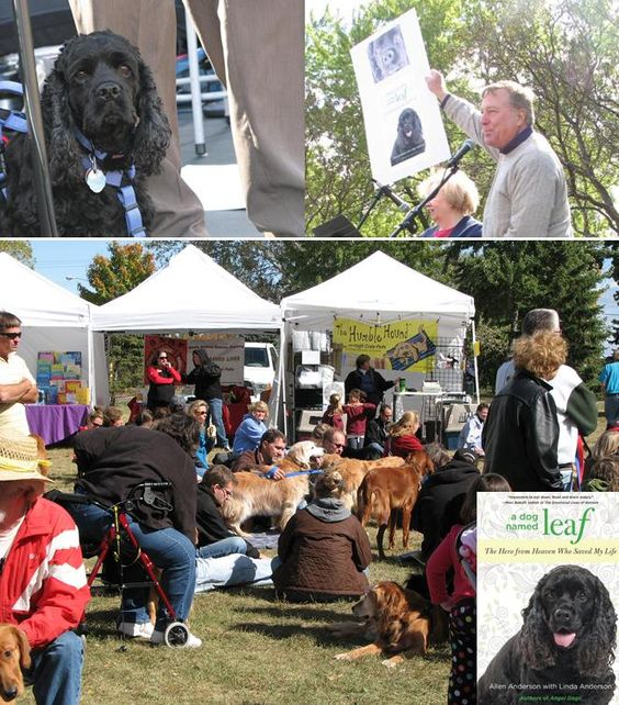 A great day at Goldzilla featuring A DOG NAMED LEAF.