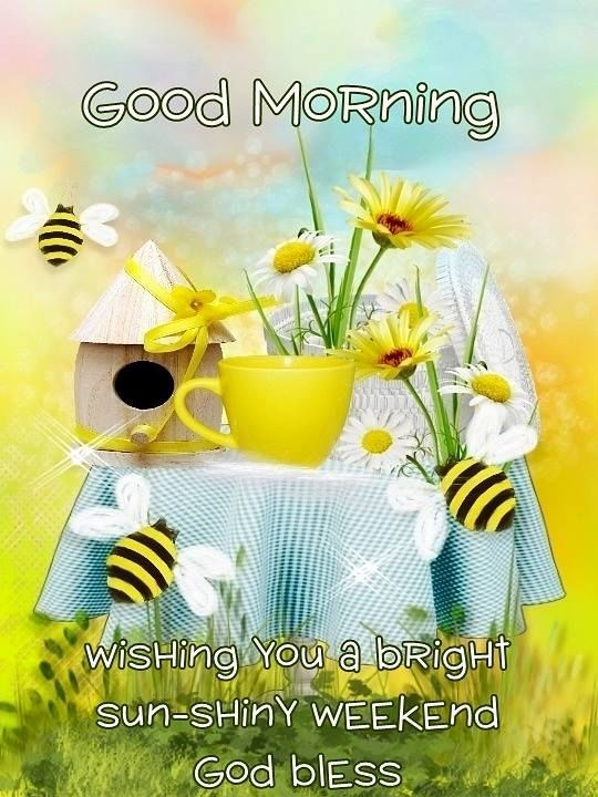 Good Morning Tgif Images : morning, images, Morning, Bright, Weekend, Happy, Thursday,, Wishes,