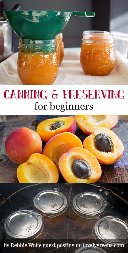 Canning & Preserving for Beginners: learn to preserve fresh fruit and vegetables in homemade jellies, jams, chutneys, pickles, & more