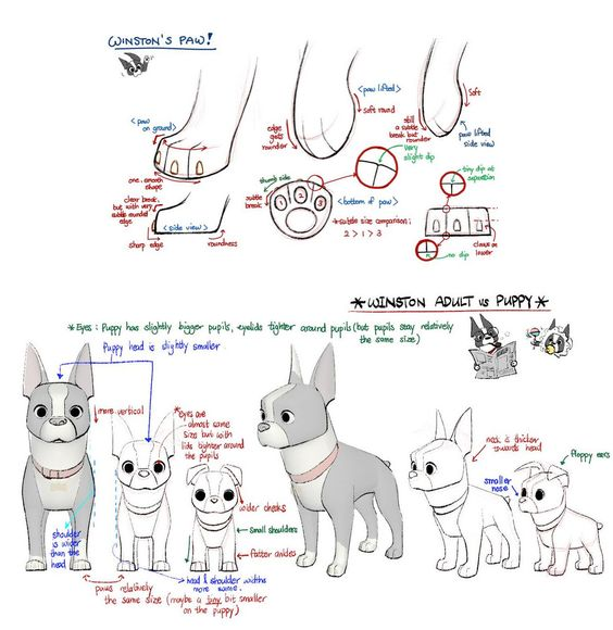 Character Design References Challenge Rules : Character design references and